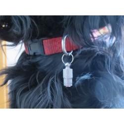 Hundemarke als Adressröhrchen mit Schlüsselring silberfarben Beispiel am Halsband